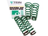 Tein S-Tech Lowering Springs 240